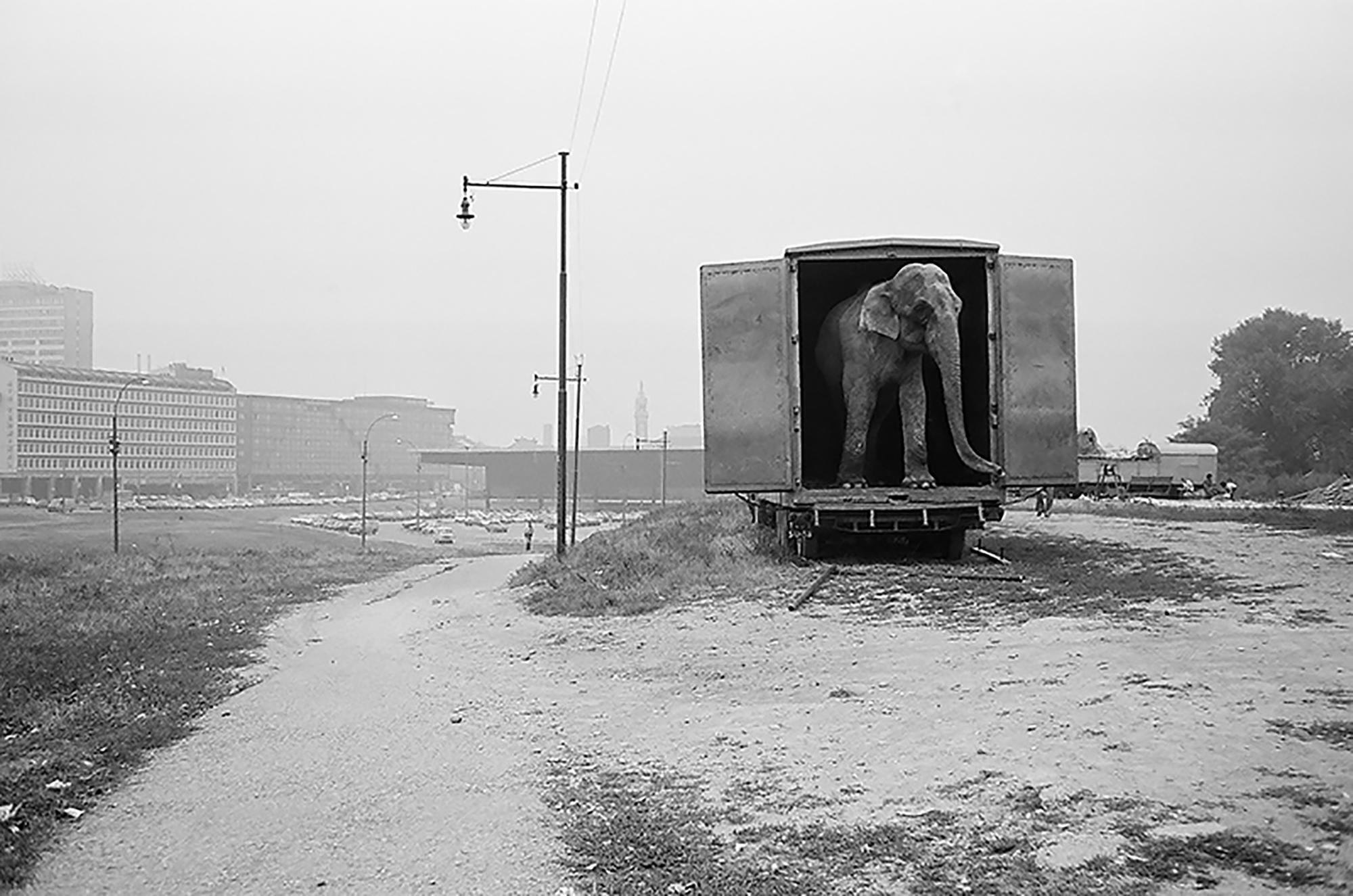 e094f555ec Apre lunedì, per proseguire fino al 9 giugno, la Milano PhotoWeek, un  palinsesto diffuso che coinvolge ogni quartiere del capoluogo lombardo per  tutta la ...